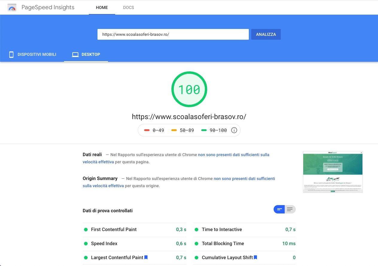 page speed insights scor 100